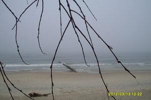 Ustecka plaża.