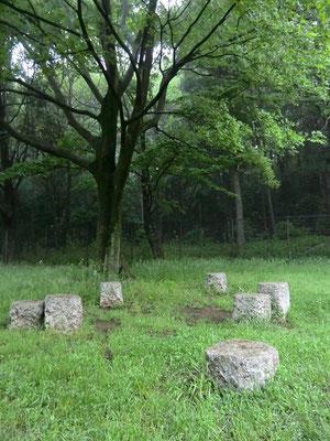 むさしの 野川公園湧水広場の石(休憩用)