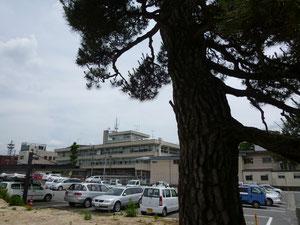 奥に飯田市庁舎がみえます