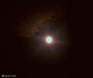 Moon 2012 - Chiara Tomaini