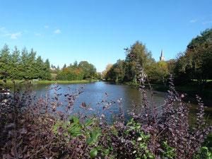 étang de Brielles