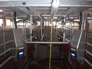 Auto - Tandem mit hoch verlegter Milchleitung