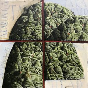 'North Head' 50 x 50 cm, Oil on Canvas, 2018
