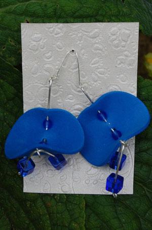 blaue elefantenohren - cooole