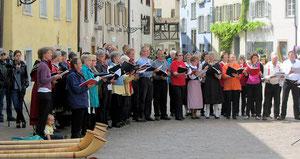 Gemeinschaftskonzert Alphorngruppe Arcas, Mai 2013