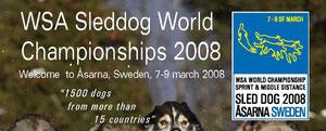 Чемпионат Мира WSA 2008