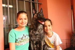 v.l.n.r.Cheyenne, Amanda und Luna