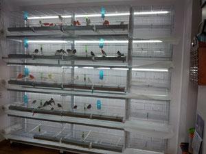 Nueva Instalación de luces led.
