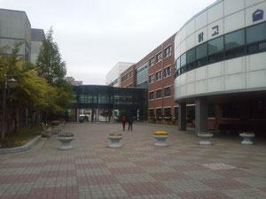 龍湖(ヨンホ)高校