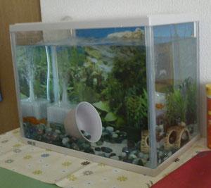 12リットル水槽 by GEX