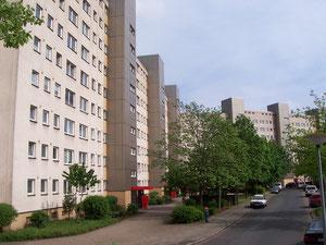 """Die Straße """"Wohlers Eichen"""""""