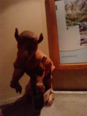 Eines der seltenen Bilder eines Velozehufhundoren
