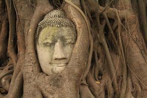 Wat Maha That 内にある仏像