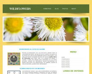 paginas web a bajo costo diseño ayudas jimdo