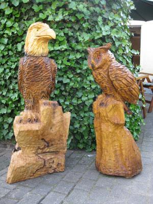 Adler und Eule