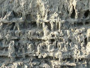 les sables en Baie de Somme façon troglodyte