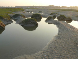 La baie d'Along  en baie de Somme