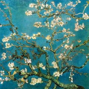 Vincent van Gogh: blühende Mandelzweige