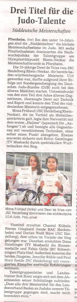 Rhein-Neckar-Zeitung (14.11. 2011)