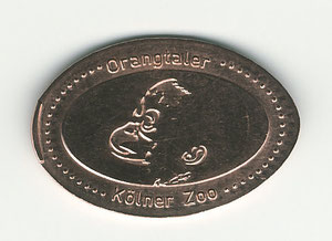 Kölner zoo - motief 3