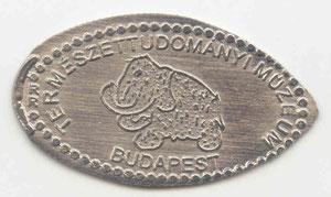 Budapest - National History Museum - motief 3