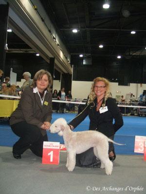 Tsarine Meilleure Jeune et Championne Junior d'Ortenau jugée par Mme Feuz E. (Suisse).