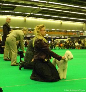 Tsarine dans le ring d'honneur.