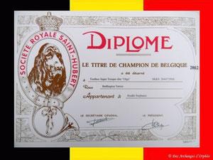 "TOOLBOX Super Trouper ""Olga"" obtient le titre de champion de Belgique."