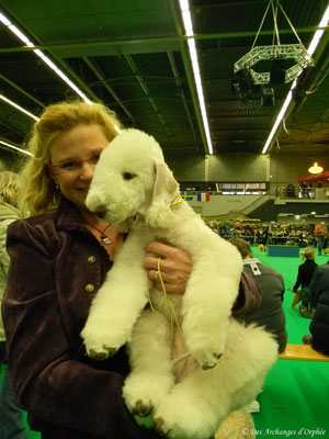 Tsarine - BOB Puppy à la CACIB d'Eindhoven.