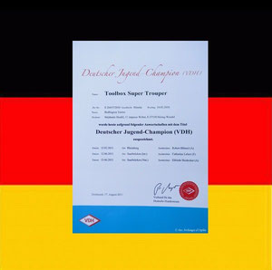"""TOOLBOX Super Trouper """"Olga"""" - Championne d'Allemagne Jeune (VDH)."""