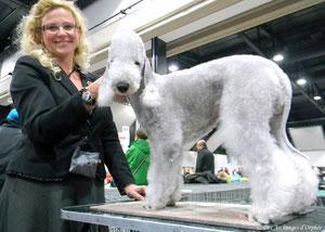 Olga au Dog show d'Offenburg.
