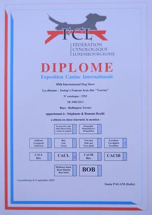 Le diplôme de Tsarine.