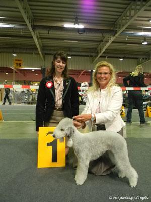 Pour son premier concours en classe Ouverte, Olga devient Championne du Luxembourg jugée par Mme Doddo Sandahl (Suède).