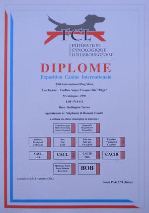 Le diplôme d'Olga.