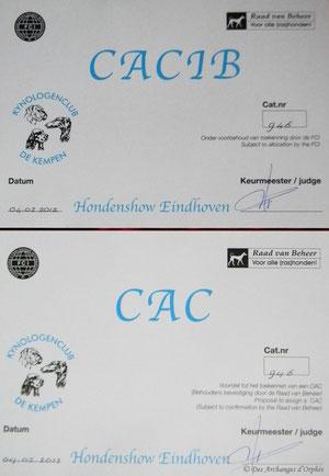 Olga obtient le CAC et CACIB à Eindhoven.
