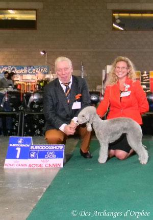 Olga - 1ère Excellent en classe Champion, CAC, CACIB et BOB /Meilleure de race.