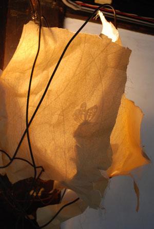 -長野県安曇野市穂高の野の花診療所-