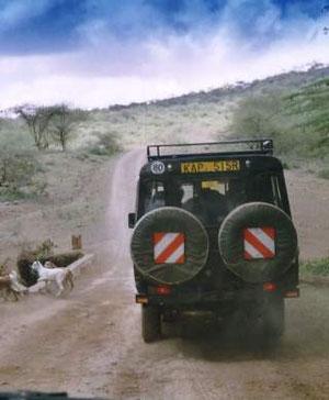 Ranger Begleitfahrzeug