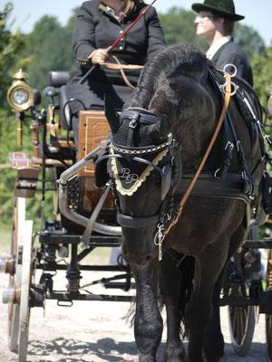 Rossererfest der Pferdefreunde Bad Feilnbach 2012
