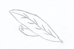 Cochi in flug