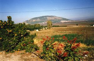 Berg Tabor