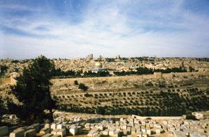 Jerusalem Blick zum Ölberg