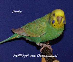 Mama von Otto - aus Ostfriesland