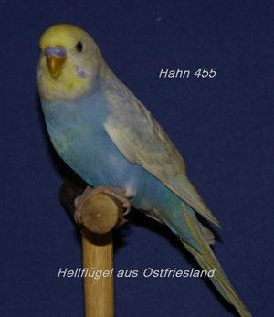 Papa von Otto - aus Ostfriesland