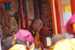 His Holiness Dalai Lama, Tibet, Dharamsala, Lhasa, Ladakh, Leh, Kalachakra, Himalaya, India