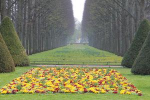 Der französische Garten