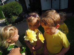 am gelben Tag gab es in der Natur viel zu entdecken