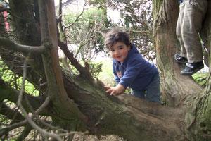 Berkay klettert gerne