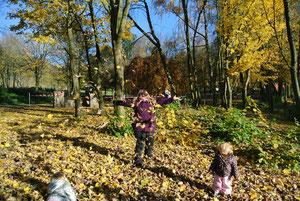 Blätterwerfen macht Spass!