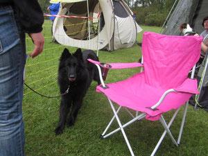 Wem gehört der Pinke-Stuhl wohl?